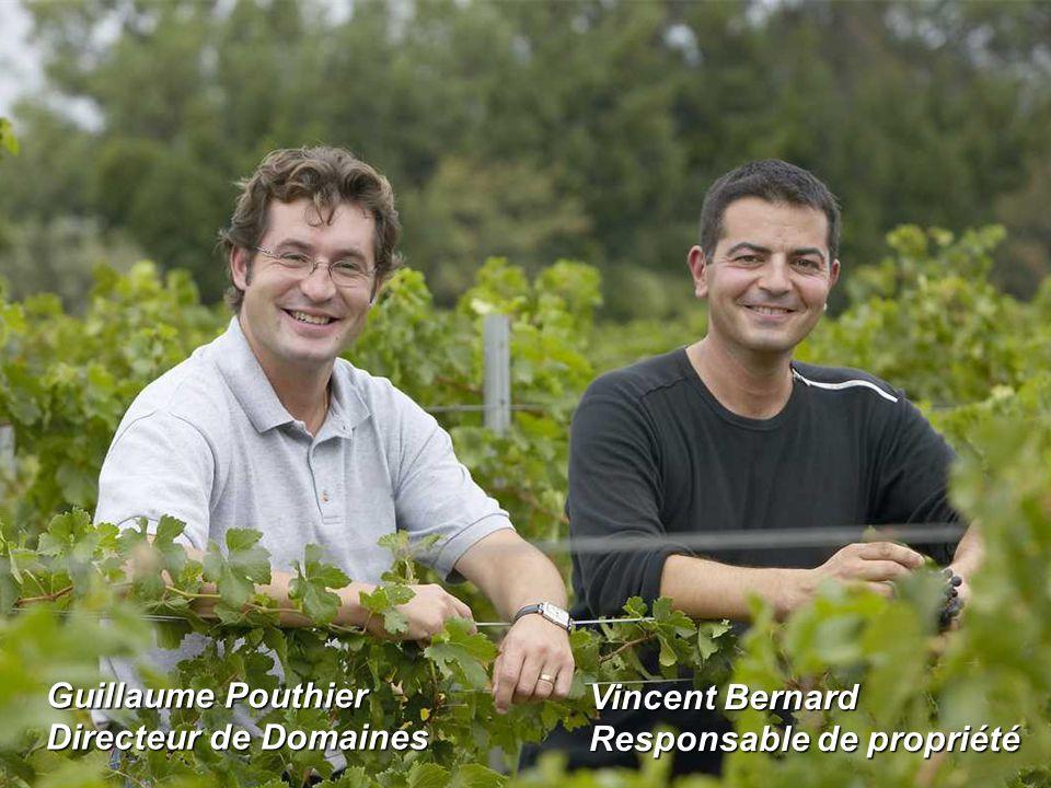 Grand Domaine Historique du Languedoc Guillaume Pouthier Directeur de Domaines Vincent Bernard Responsable de propriété