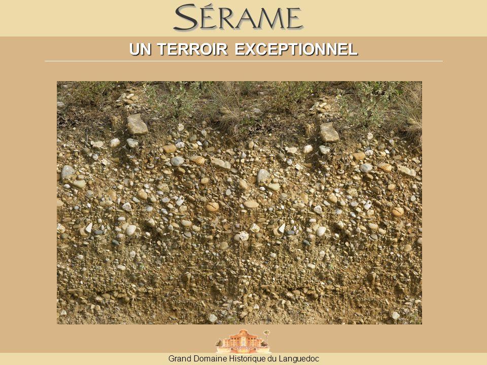 Grand Domaine Historique du Languedoc UN TERROIR EXCEPTIONNEL