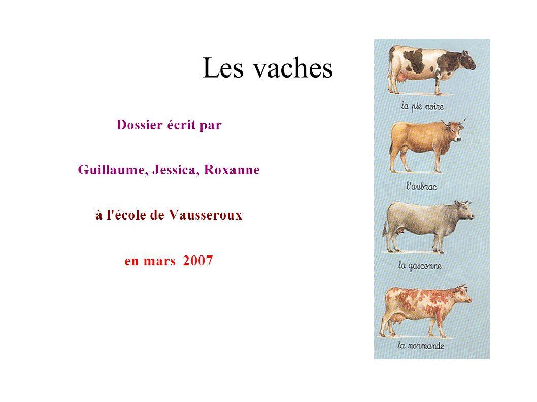 Les vaches Dossier écrit par Guillaume, Jessica, Roxanne à l'école de Vausseroux en mars 2007