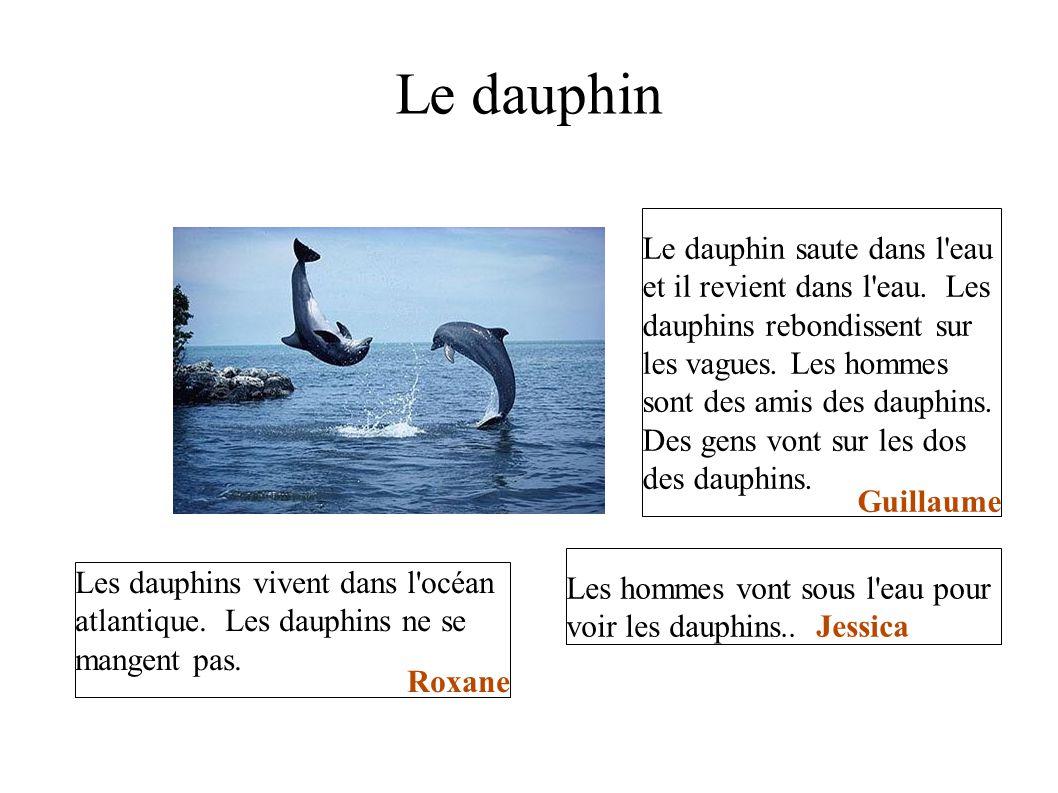 Le dauphin Le dauphin saute dans l'eau et il revient dans l'eau. Les dauphins rebondissent sur les vagues. Les hommes sont des amis des dauphins. Des
