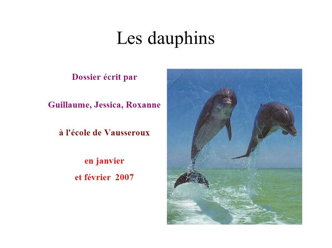Les dauphins Dossier écrit par Guillaume, Jessica, Roxanne à l'école de Vausseroux en janvier et février 2007