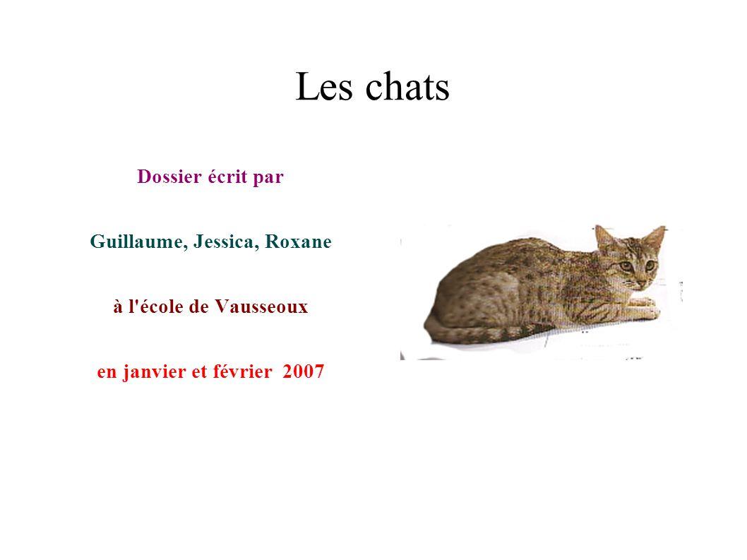 Les chats Dossier écrit par Guillaume, Jessica, Roxane à l'école de Vausseoux en janvier et février 2007