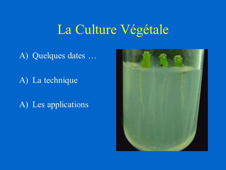 La Culture Végétale A)Quelques dates … A)La technique A)Les applications