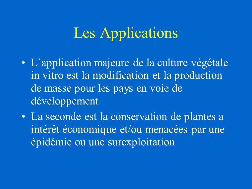 Les Applications L'application majeure de la culture végétale in vitro est la modification et la production de masse pour les pays en voie de développement La seconde est la conservation de plantes a intérêt économique et/ou menacées par une épidémie ou une surexploitation