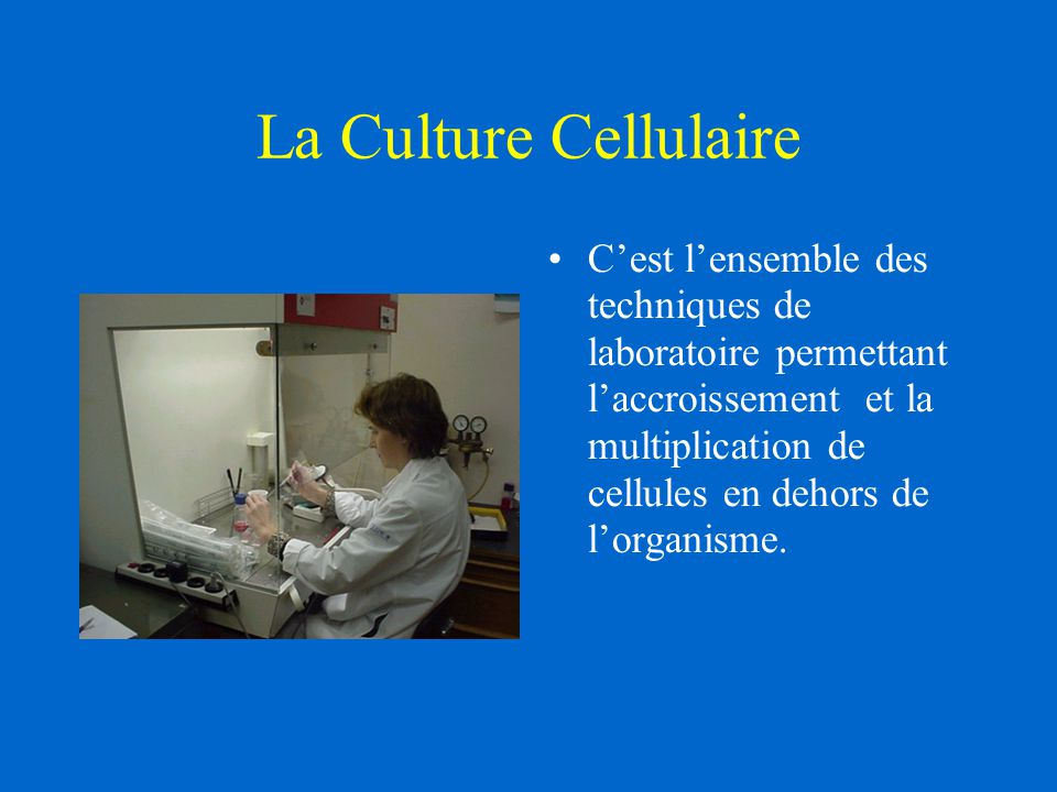 La Culture Cellulaire C'est l'ensemble des techniques de laboratoire permettant l'accroissement et la multiplication de cellules en dehors de l'organisme.