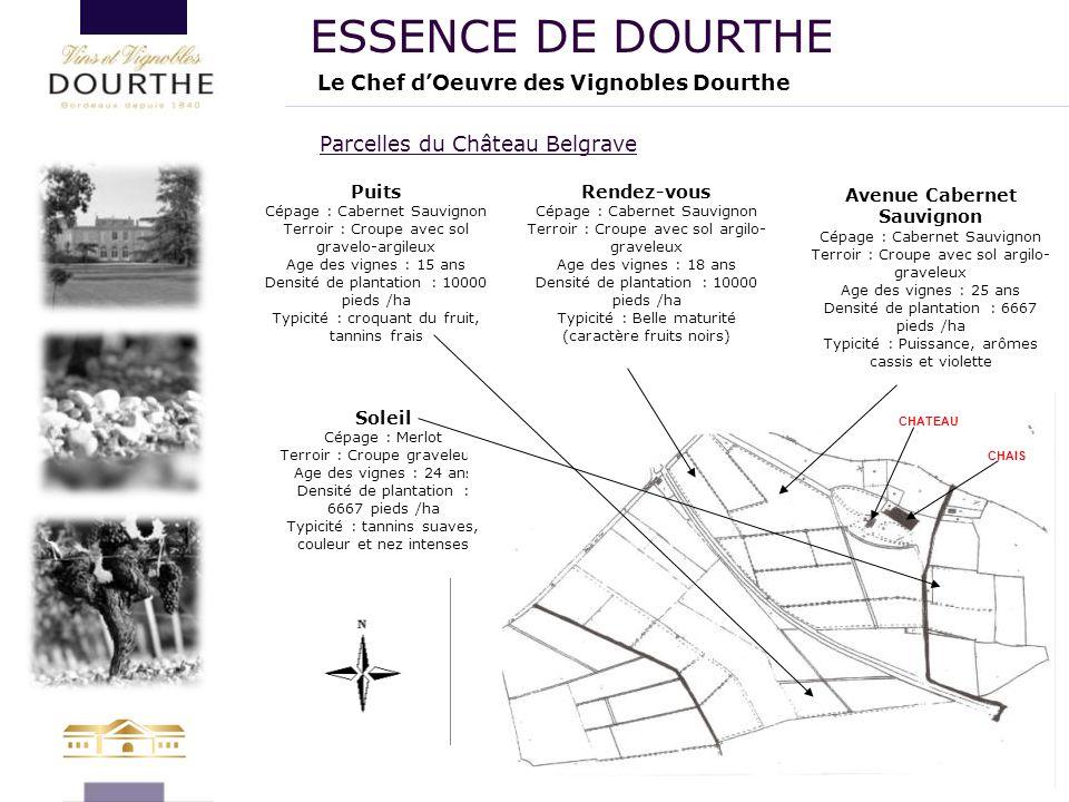 Parcelles du Château Belgrave Le Chef d'Oeuvre des Vignobles Dourthe ESSENCE DE DOURTHE Soleil Cépage : Merlot Terroir : Croupe graveleuse Age des vig