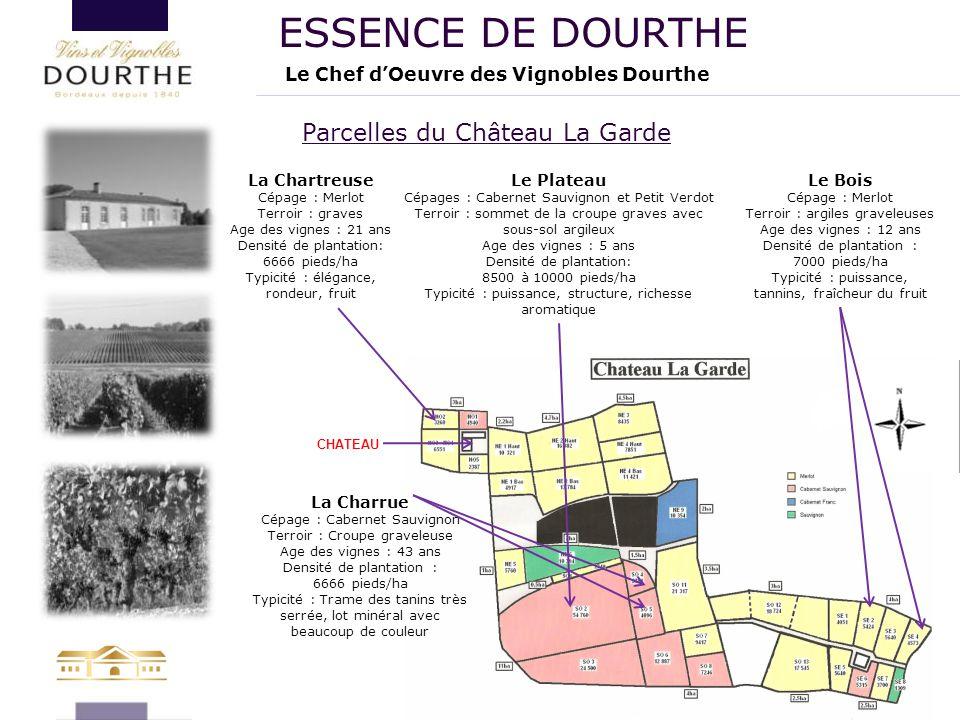 La Charrue Cépage : Cabernet Sauvignon Terroir : Croupe graveleuse Age des vignes : 43 ans Densité de plantation : 6666 pieds/ha Typicité : Trame des