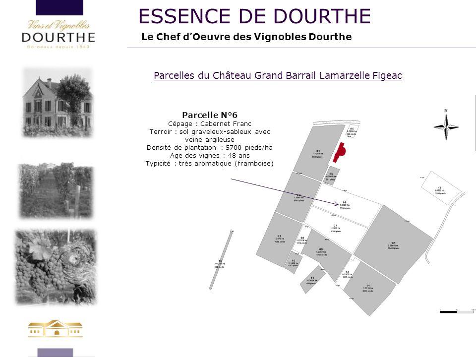 Le Chef d'Oeuvre des Vignobles Dourthe ESSENCE DE DOURTHE Parcelles du Château Grand Barrail Lamarzelle Figeac Parcelle N°6 Cépage : Cabernet Franc Te