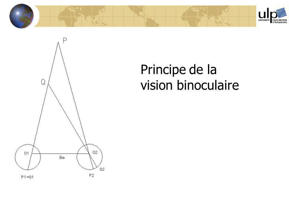 Principe de la vision binoculaire