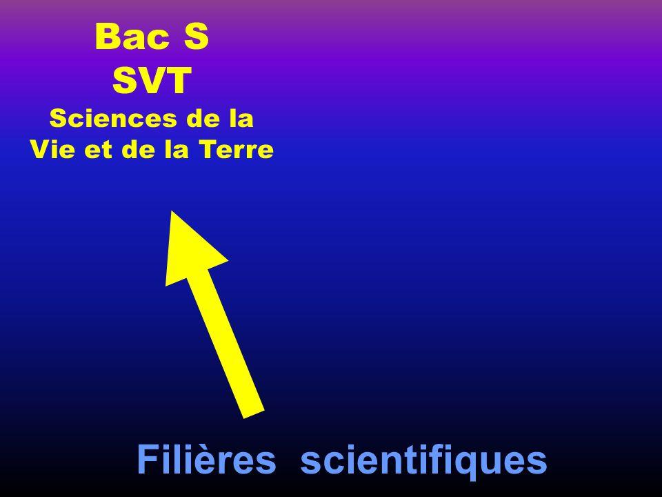 Filières scientifiques Bac S SVT Sciences de la Vie et de la Terre Bac S SI Sciences de l 'Ingénieur