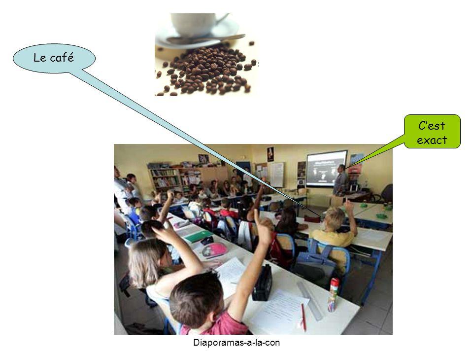 Diaporamas-a-la-con Le café C'est exact