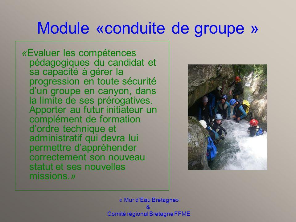 « Mur d'Eau Bretagne» & Comité régional Bretagne FFME Module « techniques verticales » «Evaluer les compétences techniques de chaque candidat et apporter un complément de formation au futur initiateur en matière de progression en milieu vertical»