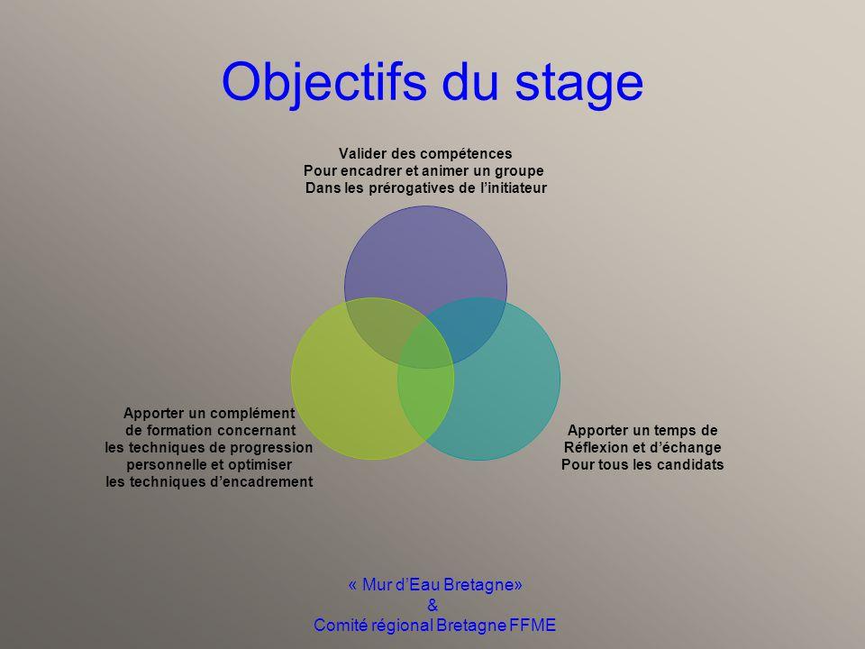 « Mur d'Eau Bretagne» & Comité régional Bretagne FFME Prérogatives du diplôme Encadrer et animer un Groupe de six personnes Dans des canyons de cotati