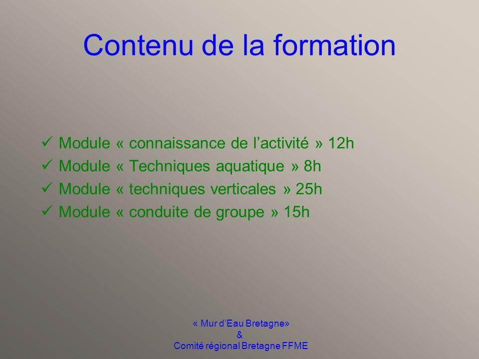 « Mur d'Eau Bretagne» & Comité régional Bretagne FFME Contenu de la formation Module « connaissance de l'activité » 12h Module « Techniques aquatique » 8h Module « techniques verticales » 25h Module « conduite de groupe » 15h