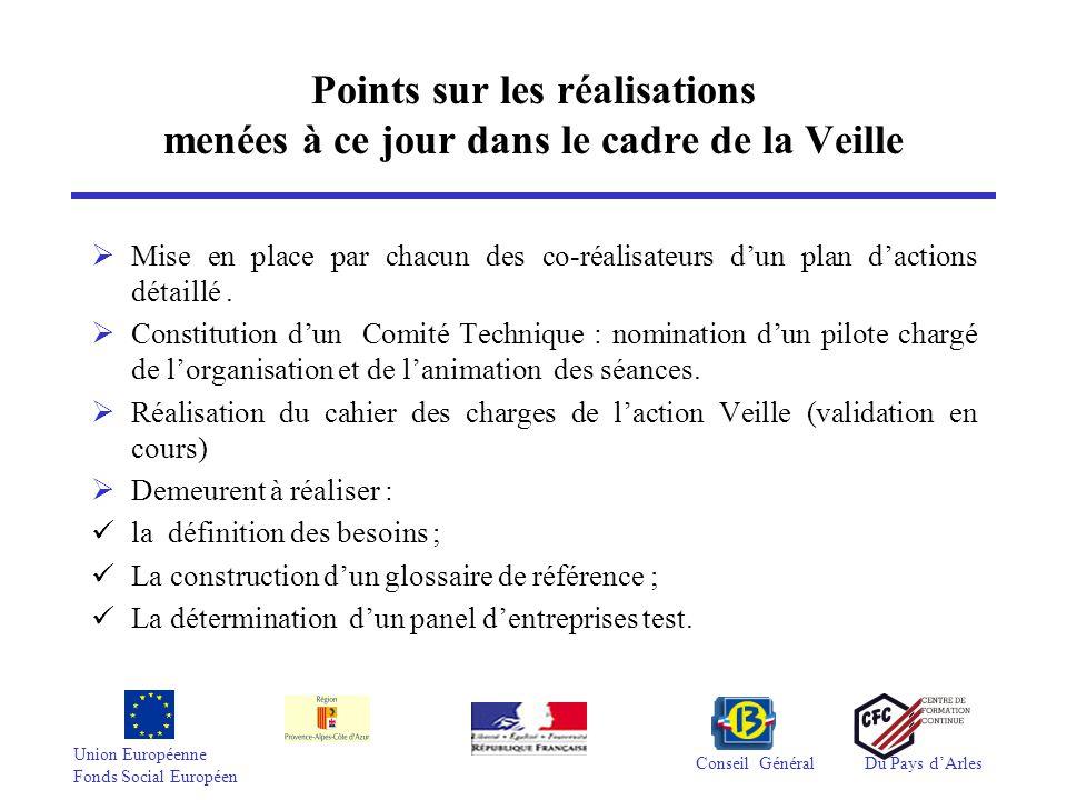 Union Européenne Fonds Social Européen Conseil GénéralDu Pays d'Arles Points sur les réalisations menées à ce jour dans le cadre de l'ingénierie de formation et d'évaluation  Mise en place par chacun des co-réalisateurs d'un plan d'actions détaillé  Constitution de 2 Comités Techniques : 1 Comité Évaluation et 1 Comité Formation.