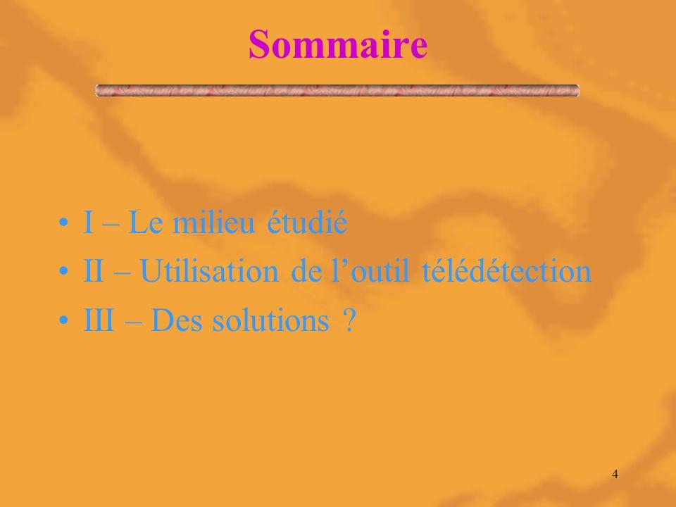 4 Sommaire I – Le milieu étudié II – Utilisation de l'outil télédétection III – Des solutions ?