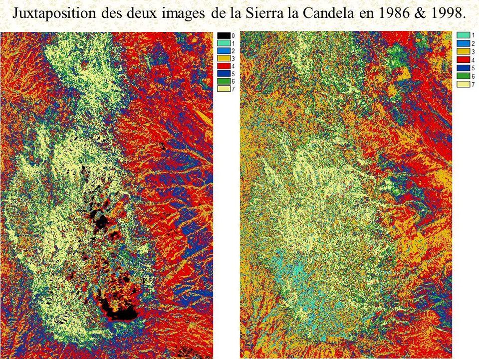 Juxtaposition des deux images de la Sierra la Candela en 1986 & 1998.