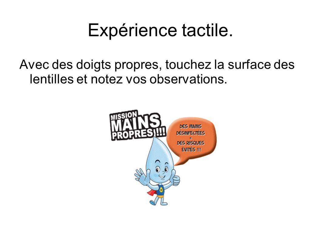 Expérience tactile. Avec des doigts propres, touchez la surface des lentilles et notez vos observations.