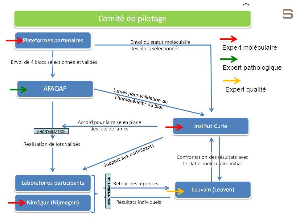 ANONYMISATION Expert moléculaire Expert pathologique Expert qualité