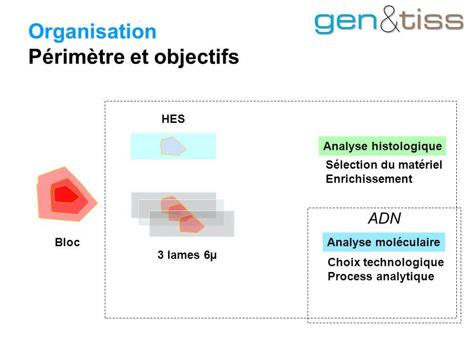Organisation Périmètre et objectifs Bloc 3 lames 6µ HES Analyse histologique Analyse moléculaire Sélection du matériel Enrichissement Choix technologique Process analytique ADN