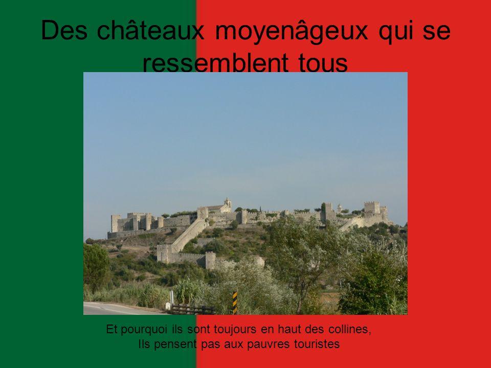 Des châteaux moyenâgeux qui se ressemblent tous Et pourquoi ils sont toujours en haut des collines, Ils pensent pas aux pauvres touristes