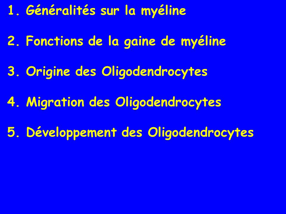 The origin of oligodendrocytes in the rodent spinal cord early oligodendrocytes ~70-80% of the total late oligodendrocytes ~10-20% of the total N.