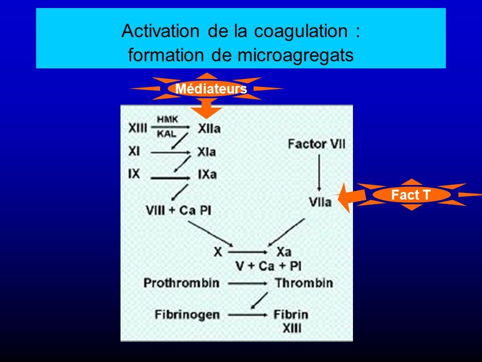 Activation de la coagulation : formation de microagregats Médiateurs Fact T