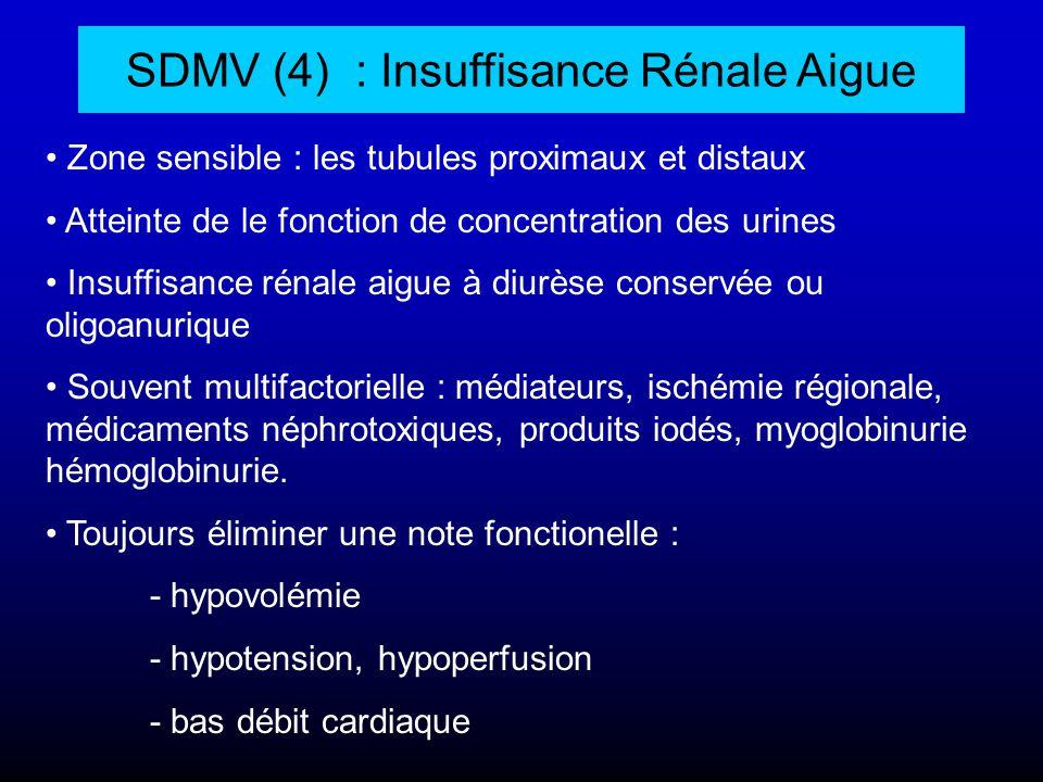 SDMV (4) : Insuffisance Rénale Aigue Zone sensible : les tubules proximaux et distaux Atteinte de le fonction de concentration des urines Insuffisance