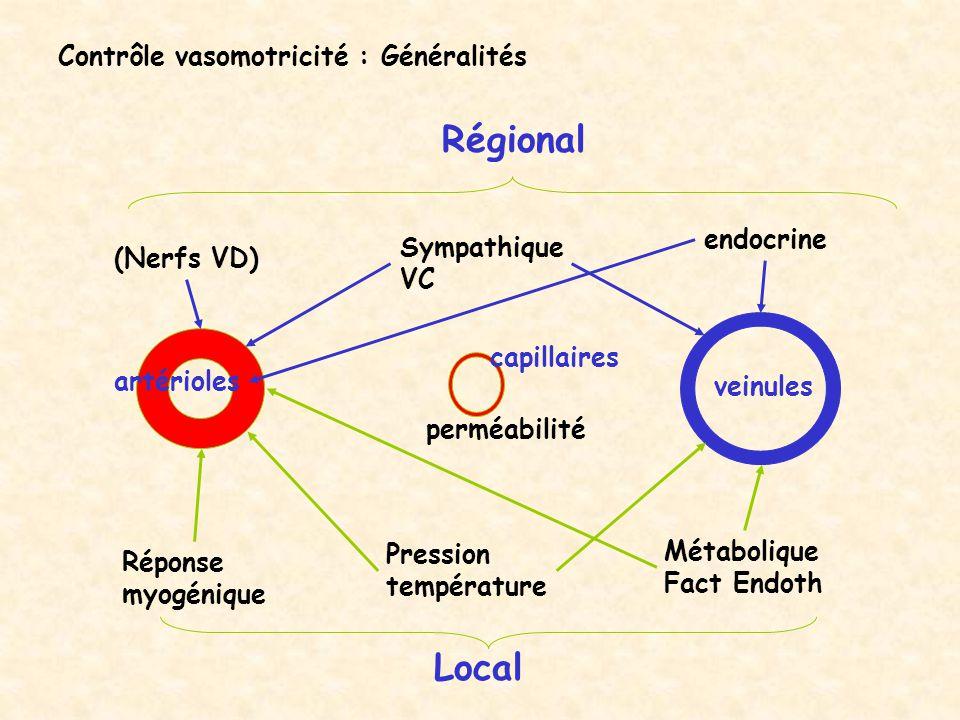 Contrôle vasomotricité : Généralités Local Régional artérioles veinules capillaires Réponse myogénique Pression température Métabolique Fact Endoth pe