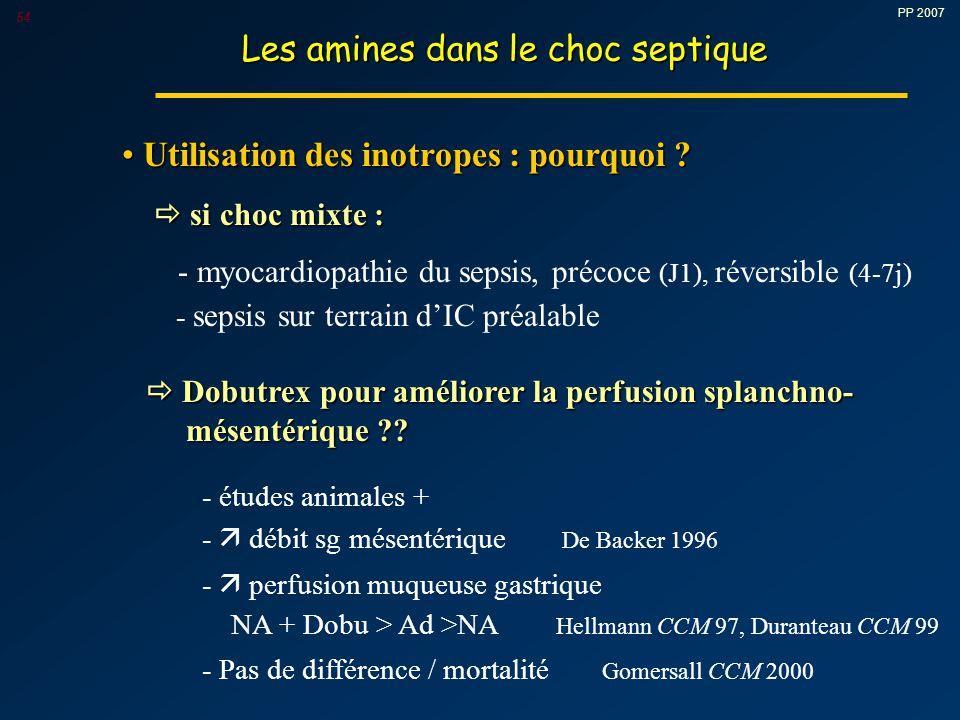 PP 2007 54 Les amines dans le choc septique Utilisation des inotropes : pourquoi .