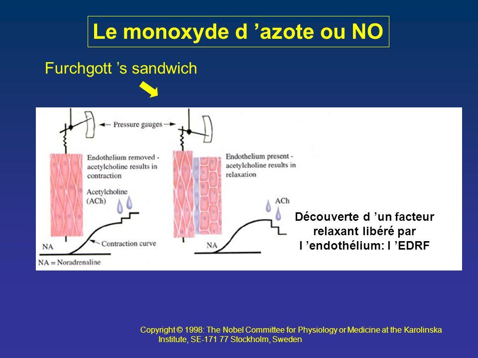 Furchgott 's sandwich Copyright © 1998: The Nobel Committee for Physiology or Medicine at the Karolinska Institute, SE-171 77 Stockholm, Sweden Le mon