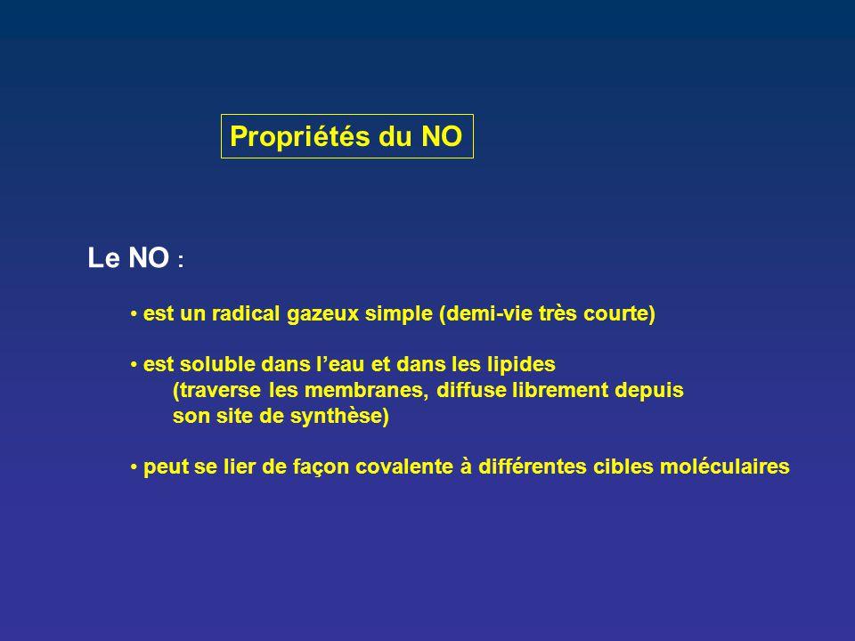 Propriétés du NO Le NO : est un radical gazeux simple (demi-vie très courte) est soluble dans l'eau et dans les lipides (traverse les membranes, diffu