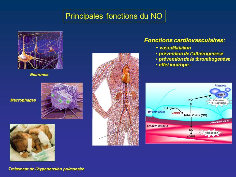 Principales fonctions du NO Neurones Macrophages Traitement de l'hypertension pulmonaire Fonctions cardiovasculaires: vasodilatation prévention de l'a