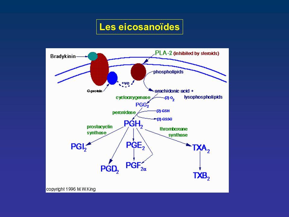 Les eicosanoïdes