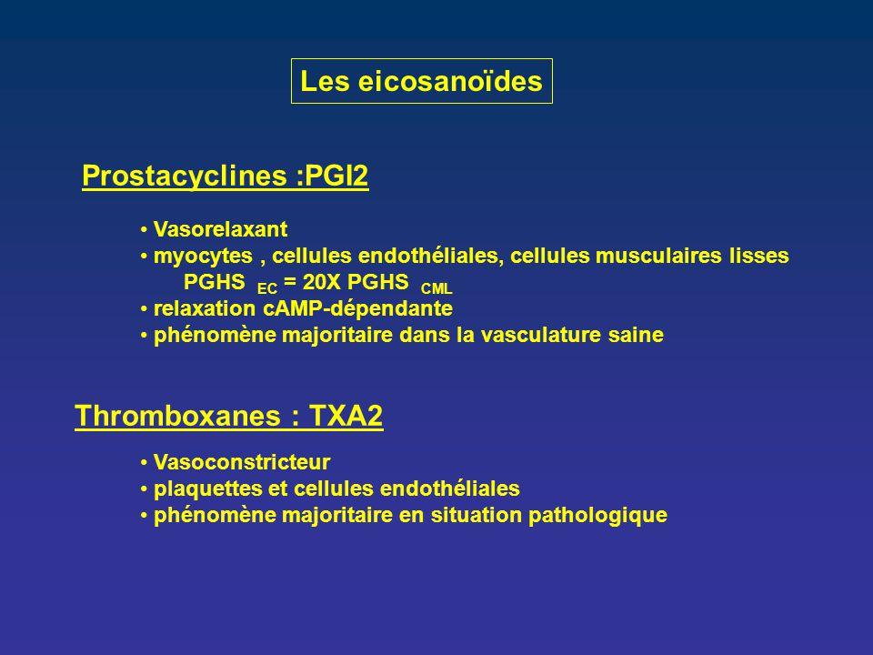 Prostacyclines :PGI2 Vasorelaxant myocytes, cellules endothéliales, cellules musculaires lisses PGHS EC = 20X PGHS CML relaxation cAMP-dépendante phén