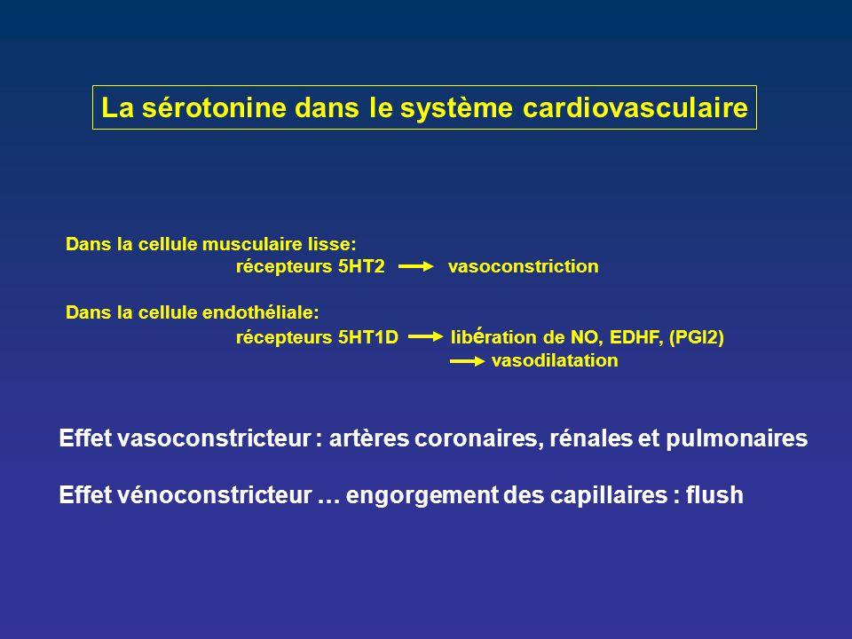 La sérotonine dans le système cardiovasculaire Dans la cellule musculaire lisse: récepteurs 5HT2 vasoconstriction Dans la cellule endothéliale: récept