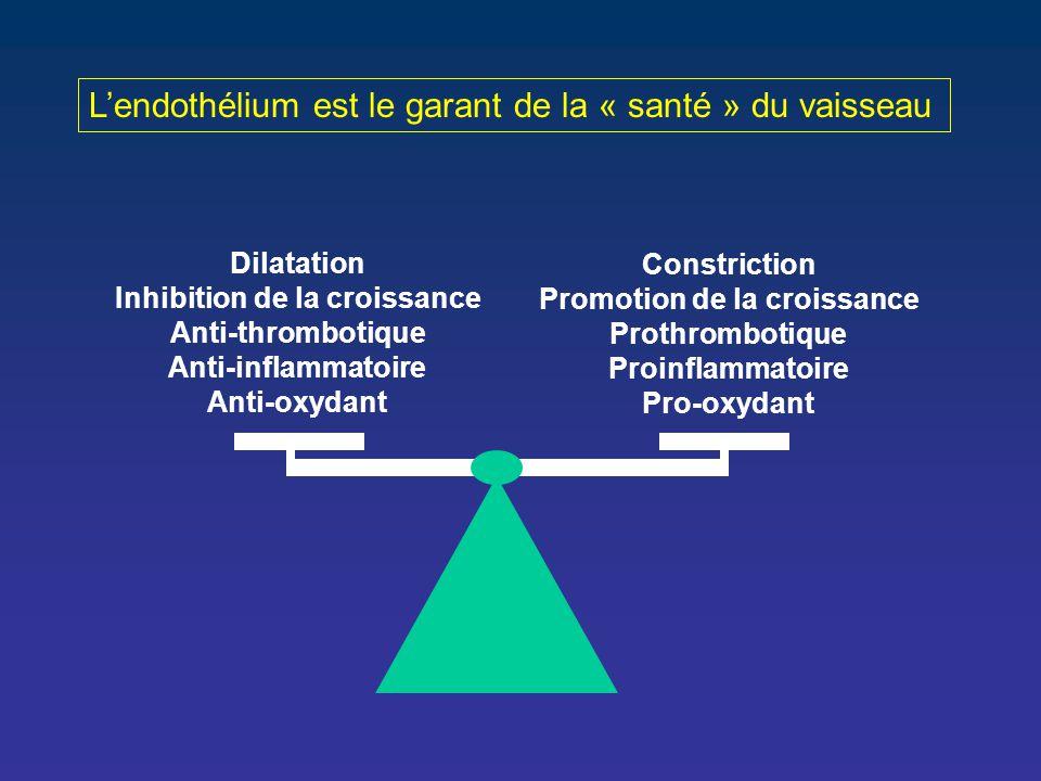 Constriction Promotion de la croissance Prothrombotique Proinflammatoire Pro-oxydant Dilatation Inhibition de la croissance Anti-thrombotique Anti-inf