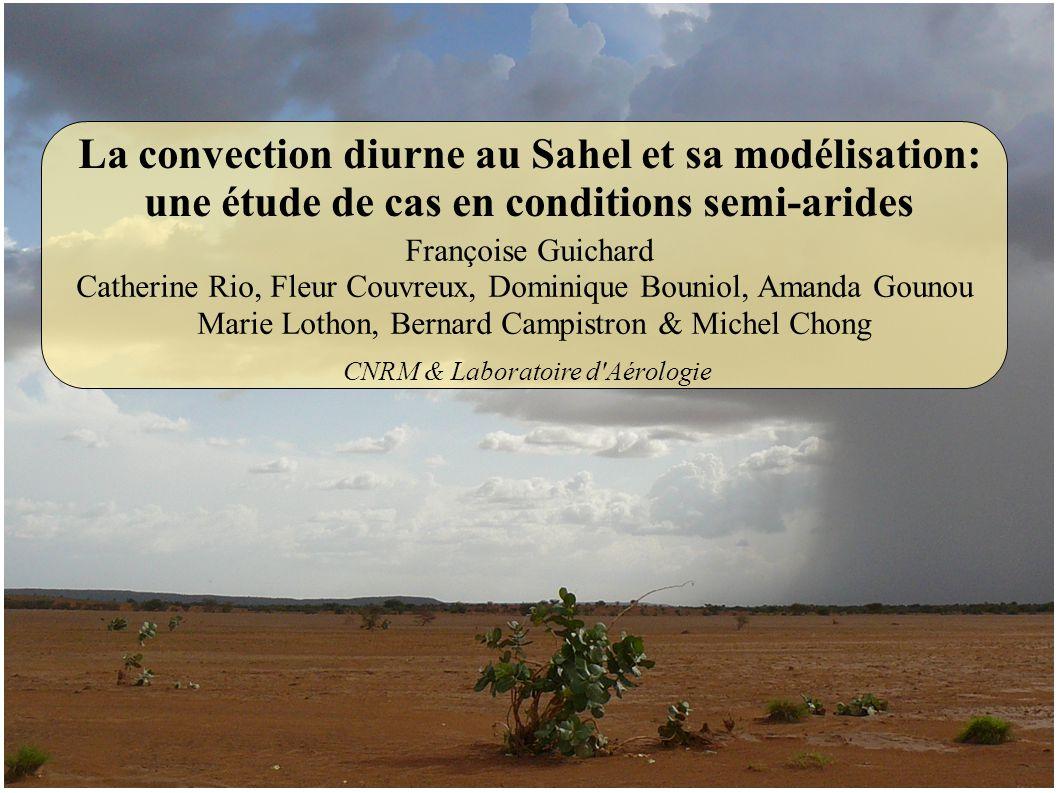 Françoise Guichard Catherine Rio, Fleur Couvreux, Dominique Bouniol, Amanda Gounou Marie Lothon, Bernard Campistron & Michel Chong La convection diurn