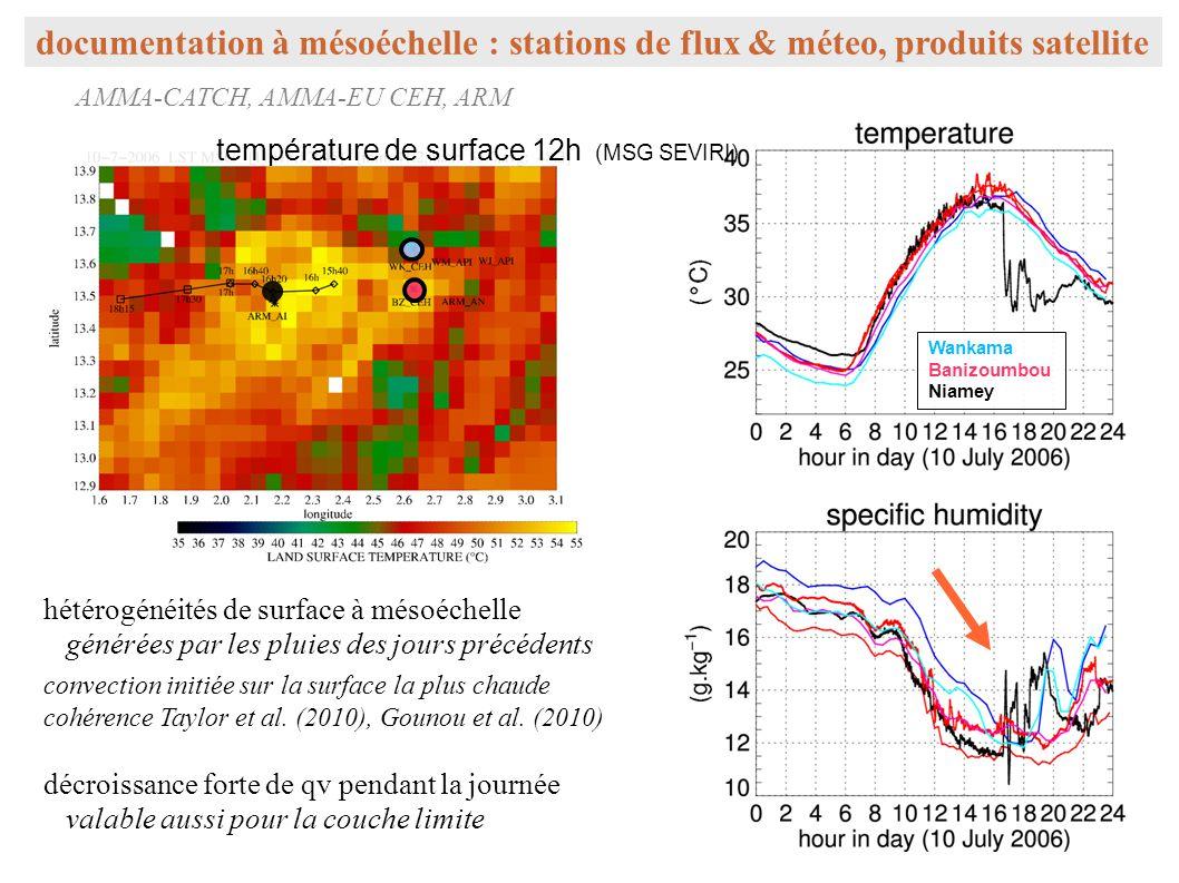 documentation à mésoéchelle : stations de flux & méteo, produits satellite AMMA-CATCH, AMMA-EU CEH, ARM température de surface 12h (MSG SEVIRI) Wanka