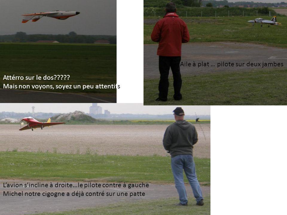 L'avion s'incline à droite…le pilote contre à gauche Michel notre cigogne a déjà contré sur une patte Aile à plat … pilote sur deux jambes Attérro sur le dos????.