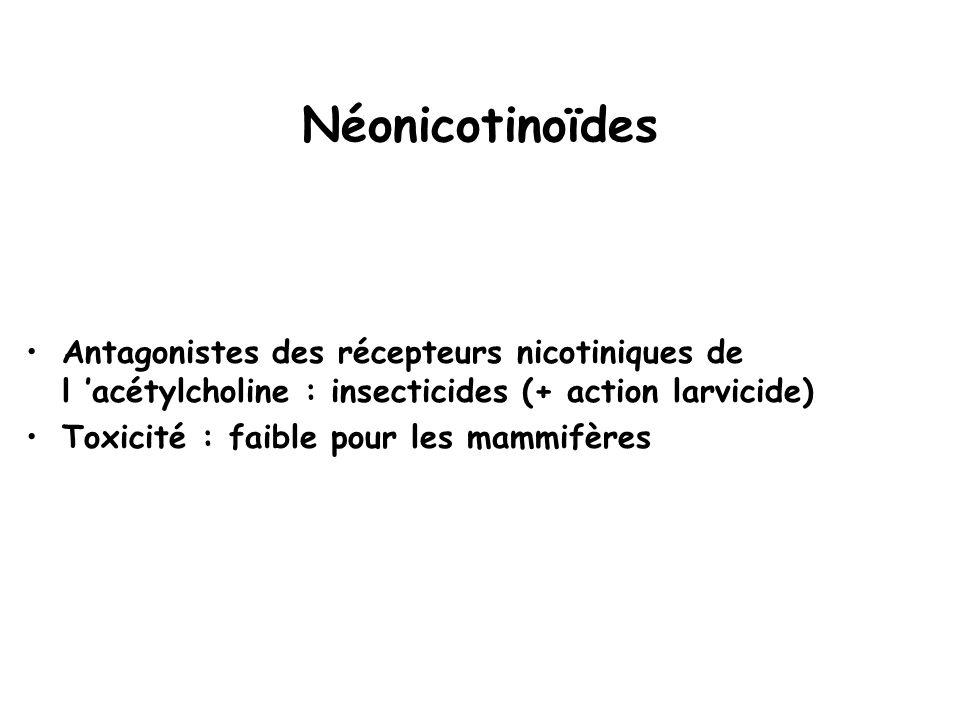 Néonicotinoïdes Antagonistes des récepteurs nicotiniques de l 'acétylcholine : insecticides (+ action larvicide) Toxicité : faible pour les mammifères