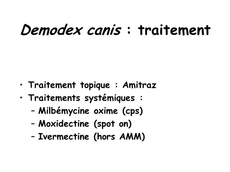 Demodex canis : traitement Traitement topique : Amitraz Traitements systémiques : –Milbémycine oxime (cps) –Moxidectine (spot on) –Ivermectine (hors AMM)