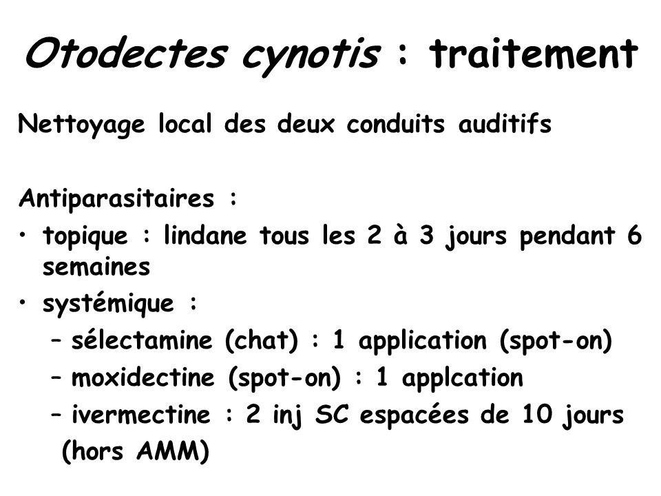 Otodectes cynotis : traitement Nettoyage local des deux conduits auditifs Antiparasitaires : topique : lindane tous les 2 à 3 jours pendant 6 semaines systémique : –sélectamine (chat) : 1 application (spot-on) –moxidectine (spot-on) : 1 applcation –ivermectine : 2 inj SC espacées de 10 jours (hors AMM)