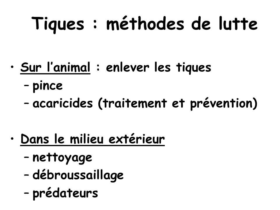Tiques : méthodes de lutte Sur l'animal : enlever les tiques –pince –acaricides (traitement et prévention) Dans le milieu extérieur –nettoyage –débroussaillage –prédateurs