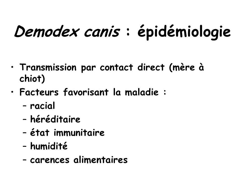 Demodex canis : épidémiologie Transmission par contact direct (mère à chiot) Facteurs favorisant la maladie : –racial –héréditaire –état immunitaire –humidité –carences alimentaires