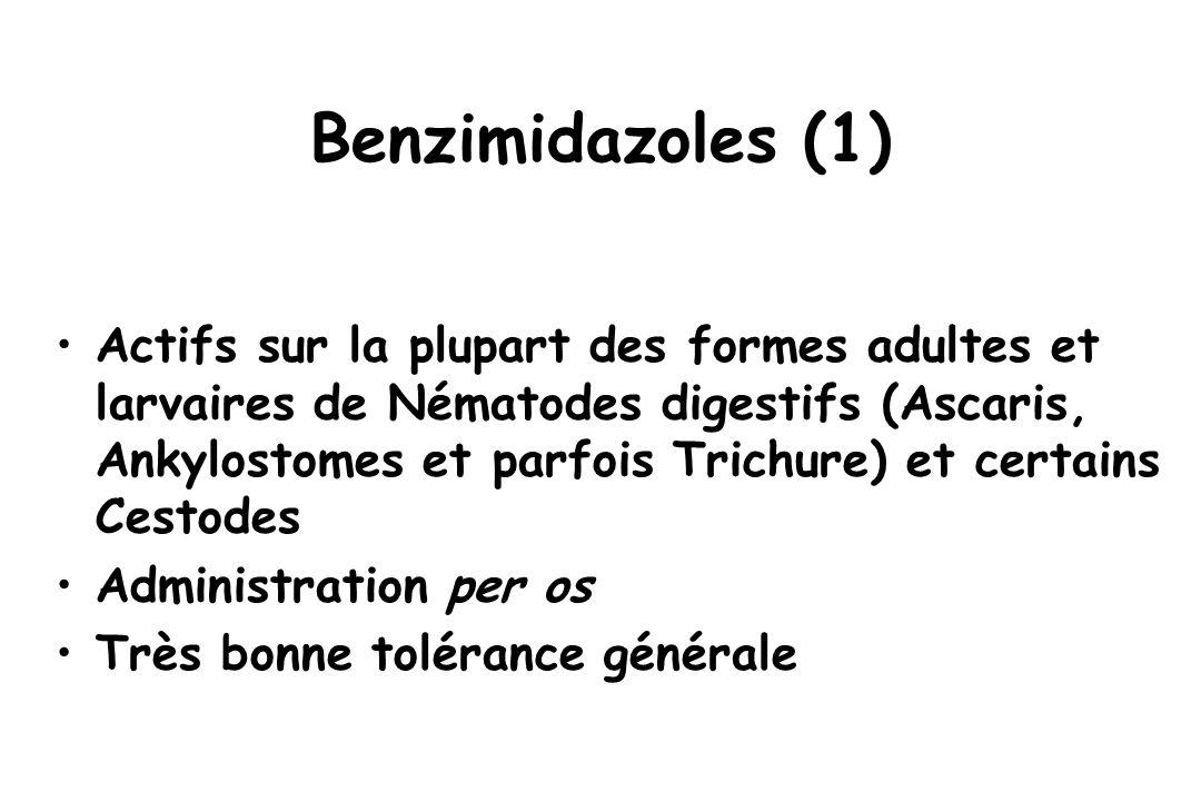 Benzimidazoles (1) Actifs sur la plupart des formes adultes et larvaires de Nématodes digestifs (Ascaris, Ankylostomes et parfois Trichure) et certain