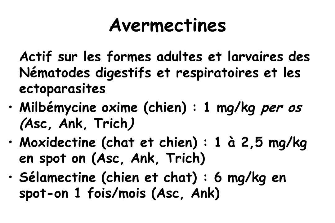 Avermectines Actif sur les formes adultes et larvaires des Nématodes digestifs et respiratoires et les ectoparasites Milbémycine oxime (chien) : 1 mg/