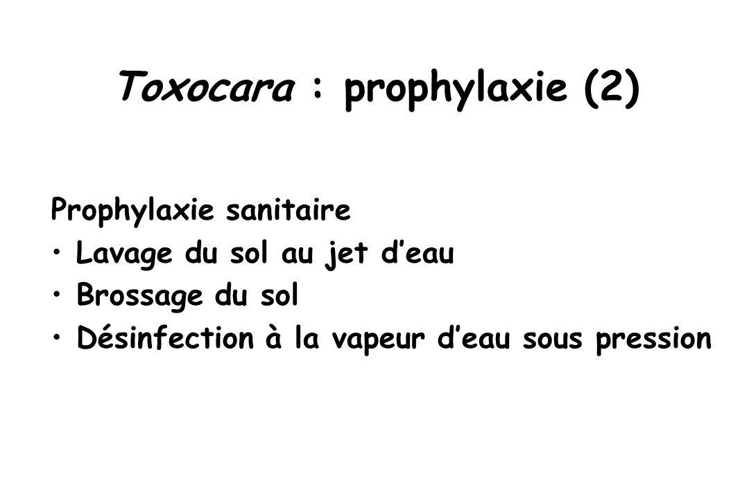 Toxocara : prophylaxie (2) Prophylaxie sanitaire Lavage du sol au jet d'eau Brossage du sol Désinfection à la vapeur d'eau sous pression