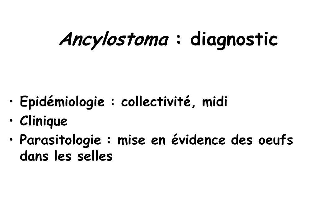 Ancylostoma : diagnostic Epidémiologie : collectivité, midi Clinique Parasitologie : mise en évidence des oeufs dans les selles