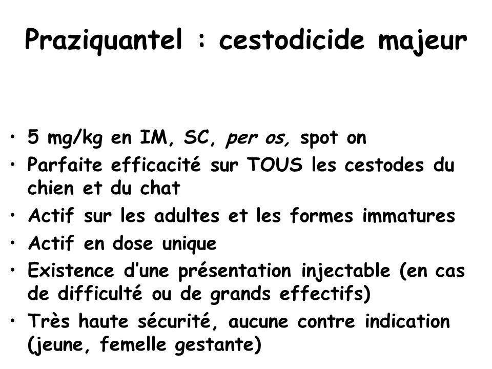 Praziquantel : cestodicide majeur 5 mg/kg en IM, SC, per os, spot on Parfaite efficacité sur TOUS les cestodes du chien et du chat Actif sur les adult